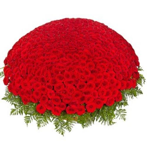 Купить на заказ 301  роза с доставкой в Аягозе